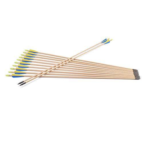 TY Archery 12 Stück Holzpfeile 30 Zoll...